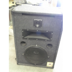 Pair of Saturn Pro-3115 Auditorium Speakers