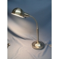 Stainless Adjustable Goose Neck Lamp