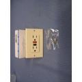 Leviton Ivory 6599/809 125 V AC GFI Receptacle