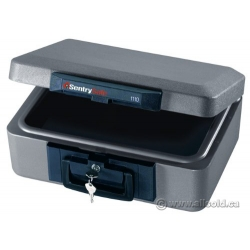Sentry 1110 Locking Fire Proof Safe
