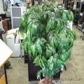 "72"" Artificial Silk Plant w/ Wicker Basket Plant Pot"