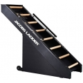 Jacobs Ladder Exercise Machine