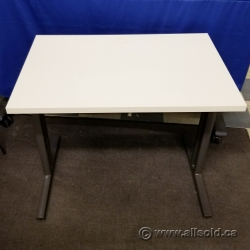 """Herman Miller White Training Table w/ Privacy Screen 36"""" x 24"""""""