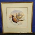 """Ringnecked Pheasant"" - James H. Killen Framed Print under Glass"
