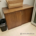 Brown 2 Door Storage Cabinet
